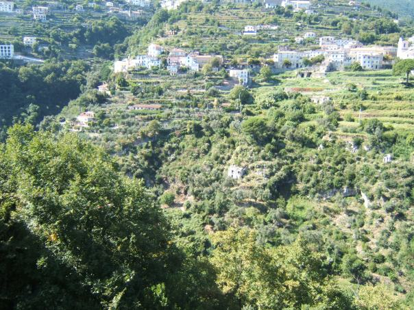 The Hills Around Ravello